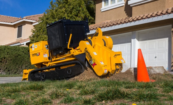 deep grinding tree stump in santa clarita valley